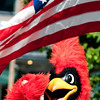 "Salute (Day 141)  The Keene Middle School mascot looking to be saluting the flag.  To get back to the shot of the day, click <a href=""http://www.nawset.com/gallery/7032225_oFapa#545813472_moujS"">here</a>.   (2009-05-25 10:07am)"