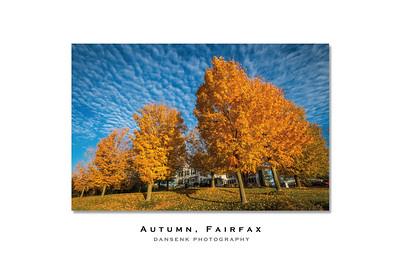 2015_Best-of_Autumn