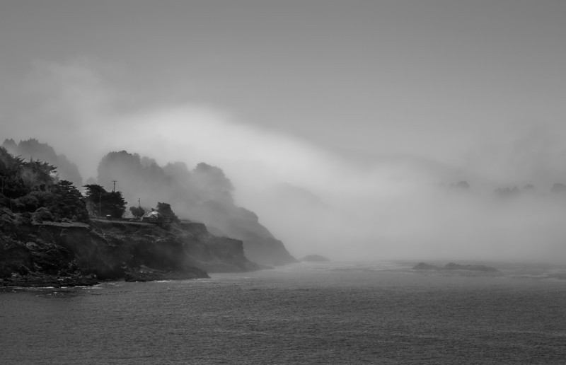 California Fog  Albion, CA