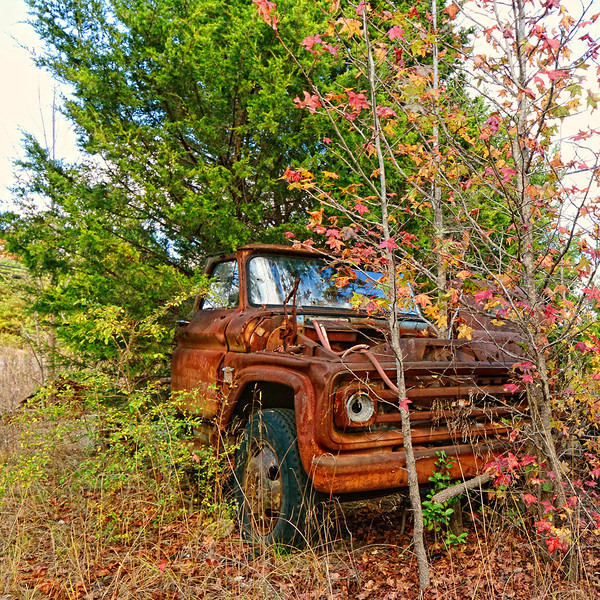 An old truck and trees in Alabama.