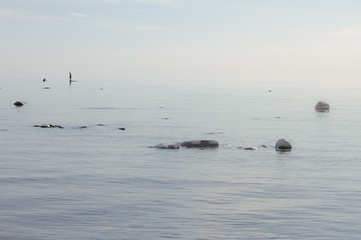 Finnish Gulf