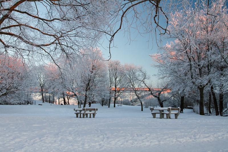 Sunshine in a winter park