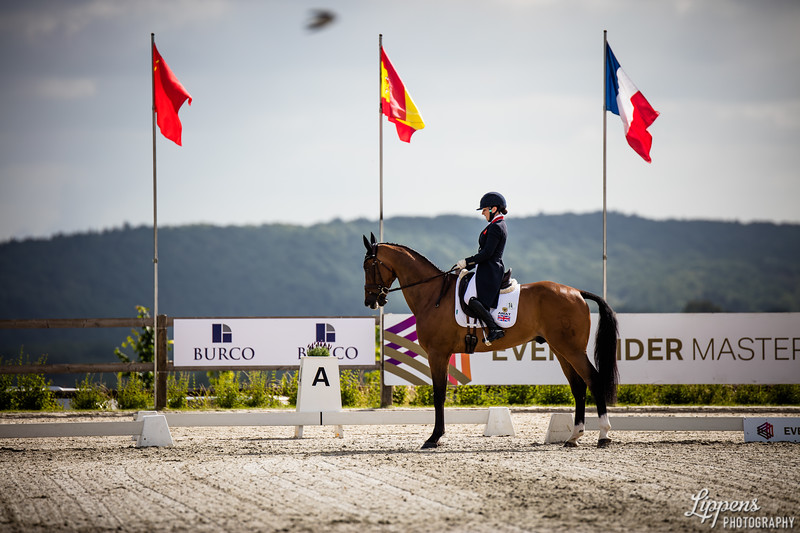 Concours Complet International, Arville 2018