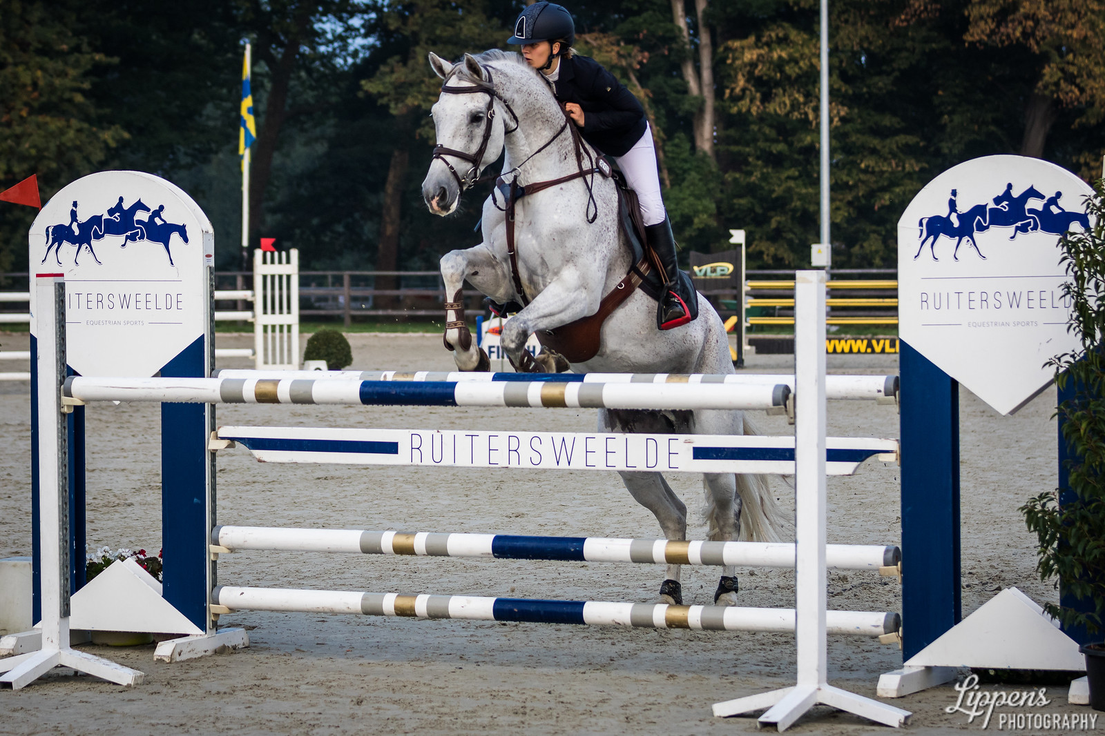 Laurine THIJS (BEL), CHAMPAGNE PIA Z (213)