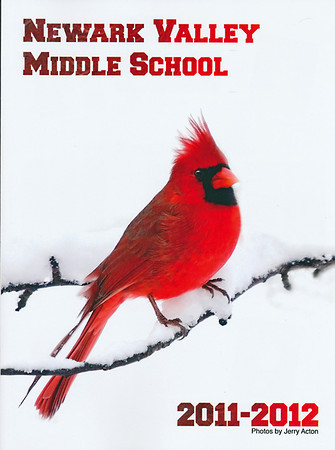 """<div class=""""jaDesc""""> <h4> Newark Valley Middle School Yearbook Cover Photo - 2011-2012 </h4> <p> The Newark Valley Middle School decided to have this wintry Cardinal photo on their yearbook this year.  The Cardinal is their mascot.</p> </div>"""