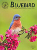 "<div class=""jaDesc""> <h4>North American Bluebird Society </h4> <h4> BLUEBIRD Journal Cover Photo - Spring 2012 </h4> <p> </p> <p> This was my best Bluebird photo of 2011.  He and his mate had 2 clutches for a total of 9 baby Bluebirds.  I was delighted to see his portrait on the cover of a journal dedicated to Bluebirds.</p></div>"