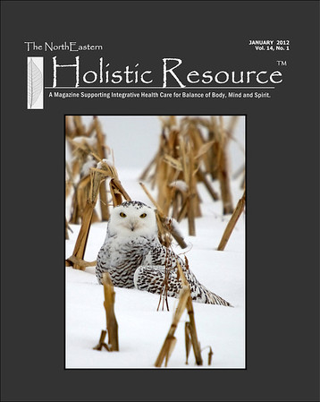 "<div class=""jaDesc""> <h4> Holistic Resource Magazine Cover Photo - January 2012 </h4> <p> Second cover photo for this female Snowy Owl.</p> </div>"