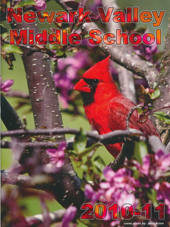 """<div class=""""jaDesc""""> <h4> Newark Valley Middle School Yearbook Cover Photo - 2010-2011 </h4> <p> The Newark Valley Middle School decided to have this spring season Cardinal photo on their yearbook this year.  The Cardinal is their mascot.</p> </div>"""