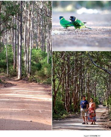 Expat Living Aug2011 S Australia(MargaretRiver)-2