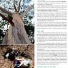Expat Living Aug2011 S Australia(MargaretRiver)-3