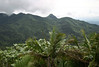 El Yunque National Forest - Luguillo Mountains - the only tropical forest in the U.S. National Forest System - located on the northeastern end of Puerto Rico
