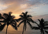 Sunrise of Isla Palominos through the Coconut Palms - eastern end of Puerto Rico