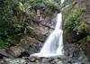 La Mina Falls - in the El Yunque National Forest