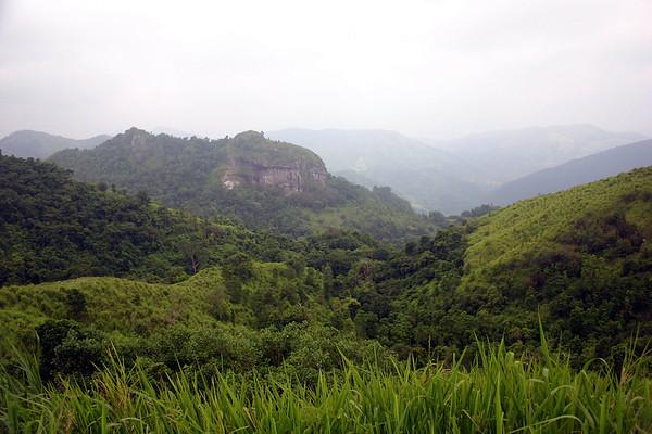 Bosque Estatal de Toro Negro (Black Bull State Forest) - Cordillera Central Mountain (mid island Puerto Rico)