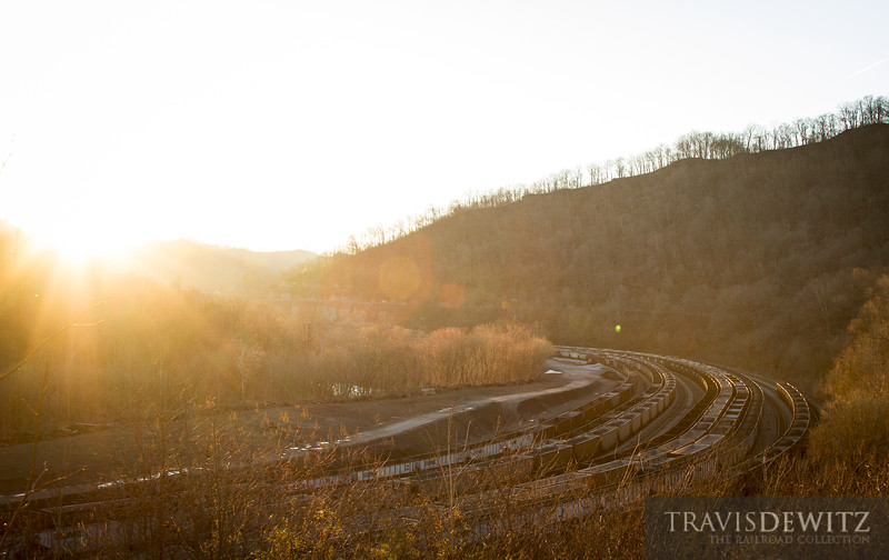 Hundreds of coal cars sit in the large Williamson, West Virginia yard.
