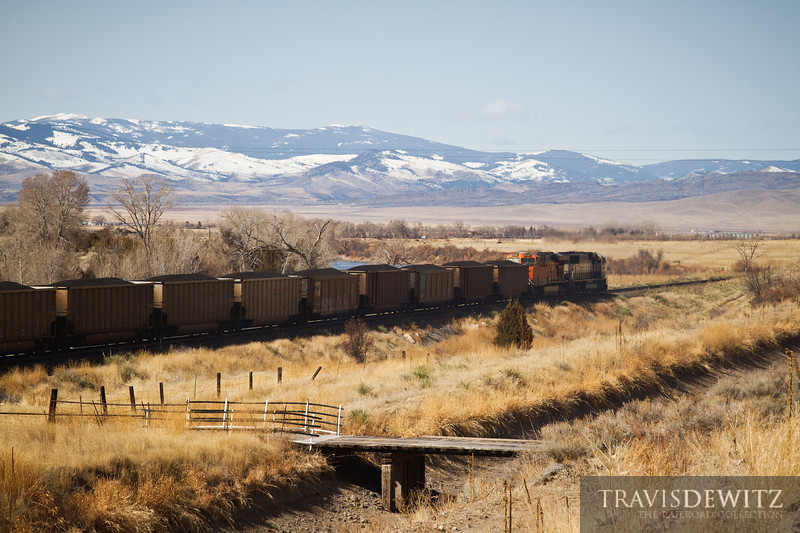 Loaded coal hoppers led by BNSF 9698 head west towards Tolston, Montana.