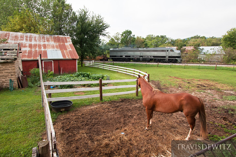 """A horse looks on, as the Ashley Furniture's 40th Anniversary passenger special rolls by being pulled by Illinois Central 100.  Travis Dewitz <a href=""""http://www.therailroadcollection.com/latest-works/"""" target=""""_blank"""">The Railroad Collection</a>"""