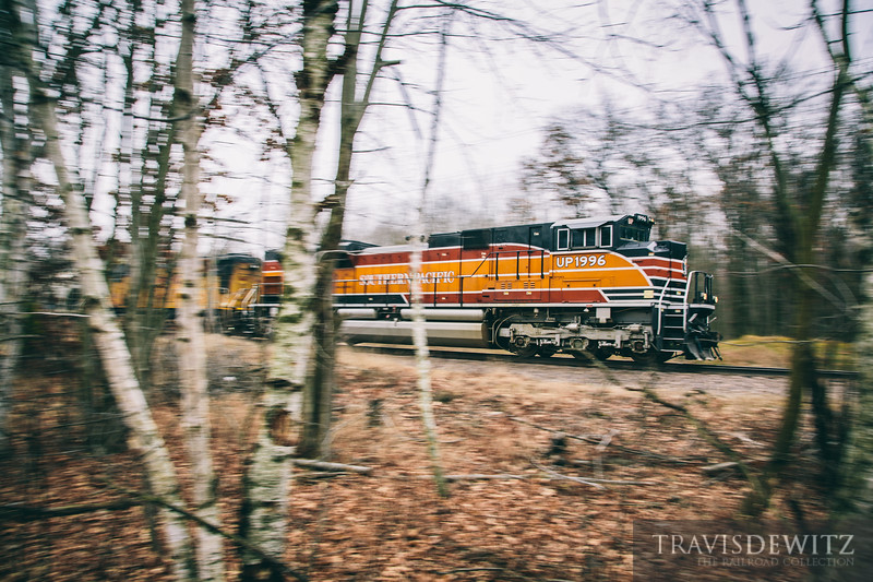 Union Pacific heritage unit UP 1996 dressed in Southern Pacific colors streaks through the Wisconsin woods as they go east towards Altoona.