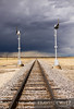 "A thunderstorm brews to the north near Springer, New Mexico as a pair of old Sante Fe semaphores still guard the tracks for BNSF and Amtrak.  Travis Dewitz <a href=""http://www.therailroadcollection.com/latest-works/"" target=""_blank"">The Railroad Collection</a>"