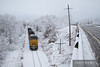 Heavy fresh snow coats everything in white besides the armour yellow Union Pacific locomotive near Fairchild, Wisconsin.