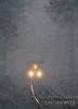 Very heavy snowfall creates a dream like world as CSX 5006 comes through the tunnel of trees near Pax, West Virginia.