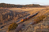 Eastbound grain train led by BNSF 5608 runs into the sunrise near Columbus, Montana.