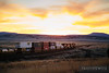 No. 6406 - BNSF Railway - Seligman, Ariz.
