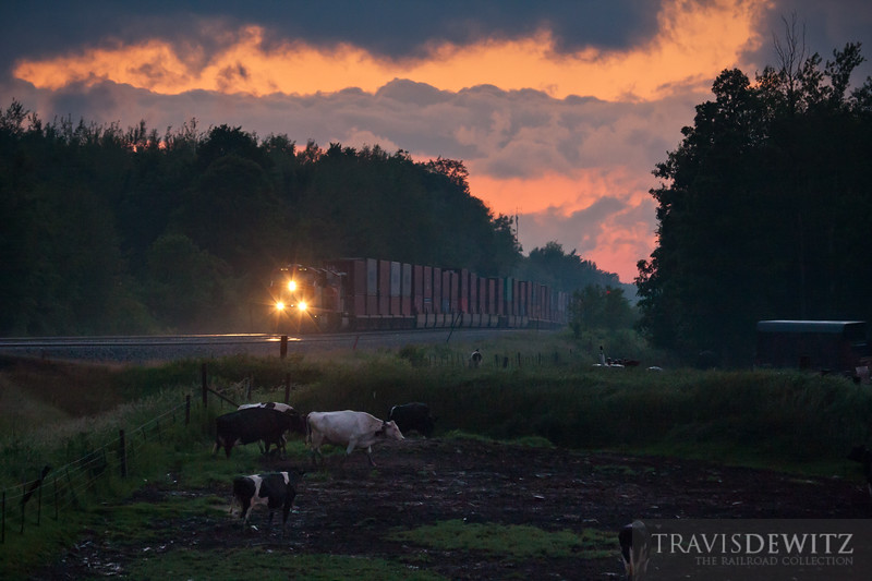 A fiery sunset ends the day in Western Wisconsin near Gilman as the cows head to the barn to be milked as a priority container train heads towards Chicago.