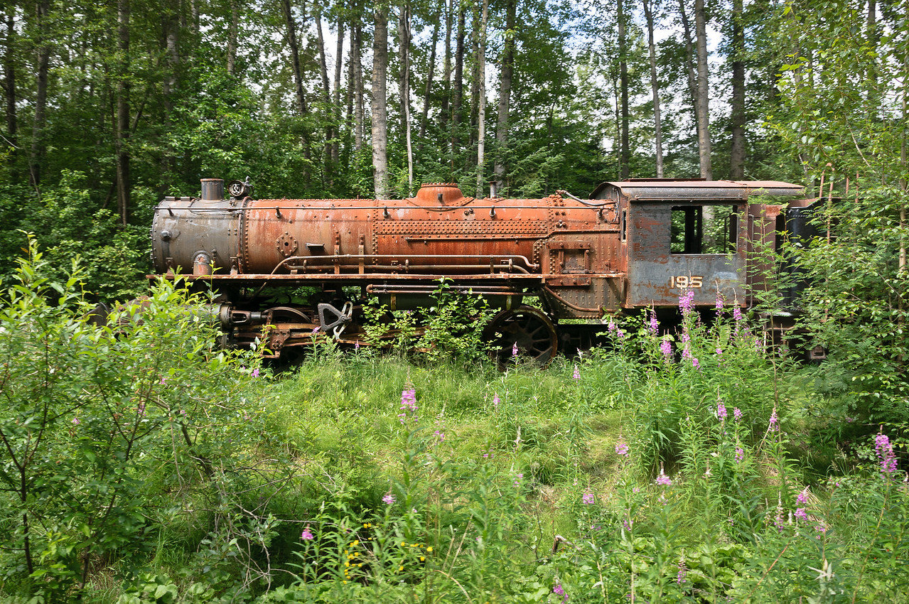 Steam Engine 195 Abandoned in Woods