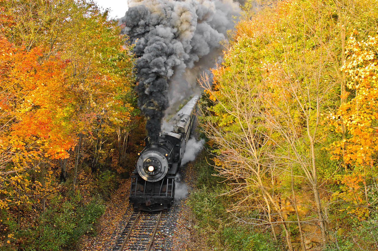 Steam Engine through the Autumn Trees