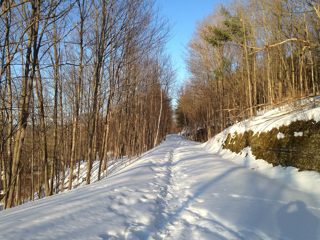 Trail between Stone Quarry and Spencer Rds – 3/9/15