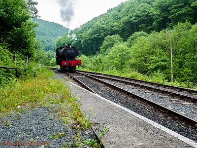 Gwili Railway Vivitar 19mm f35 30  05 2018_007