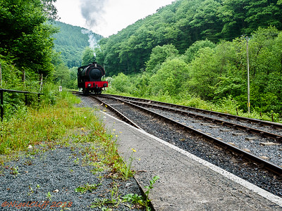 Gwili Railway Vivitar 19mm f35 30  05 2018_006