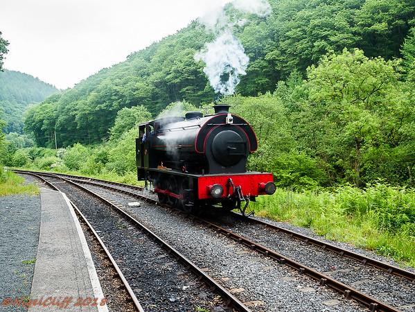 Gwili Railway Vivitar 19mm f35 30  05 2018_004