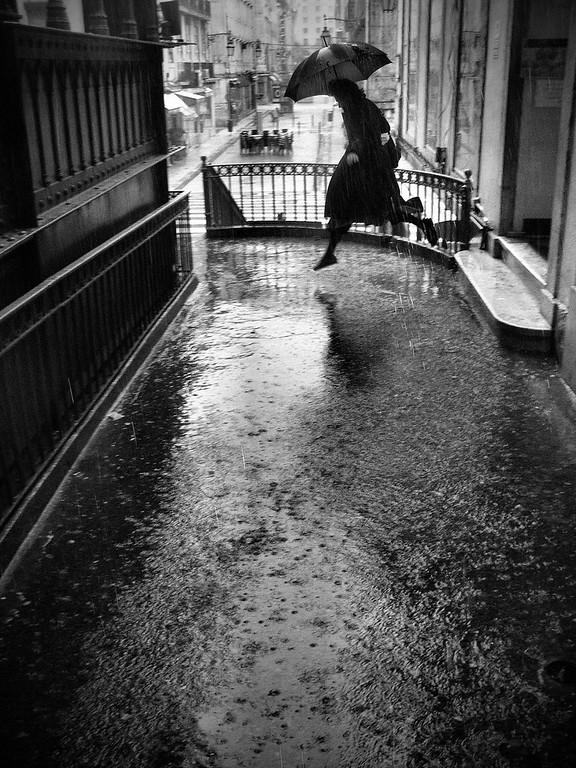 © Rui Palha - Série Rainy Days