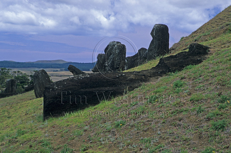 Moai on side of Ranu Raraku