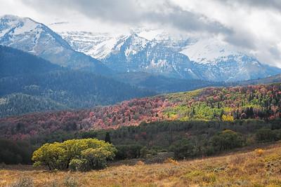 Autumn Grandeur