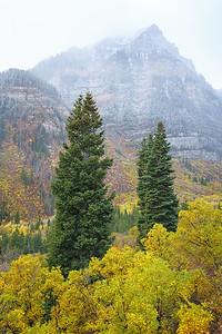 Pillars of Fall