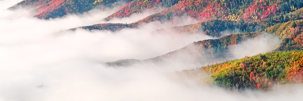 Misty Autumn Panorama
