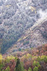 Seasons Collide at Sundance 2