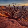 Green River Sunset #1, Canyonlands National Park, Utah
