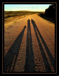 Long Shadows of Fall