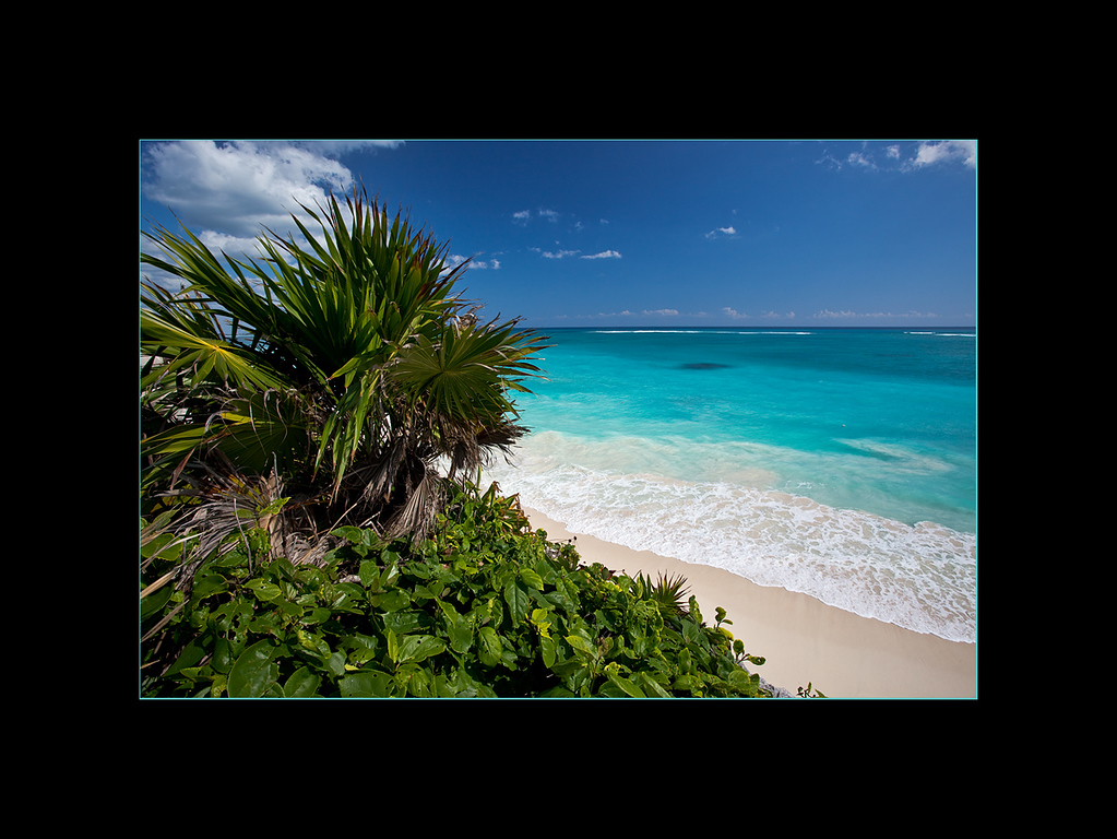 Beach Scene near Tulum, Mexico