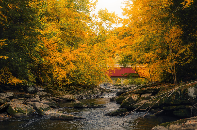 Covered Bridge In Autumn