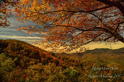 North Carolina Fall Colors 2017