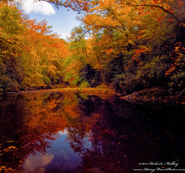 Fall On The Davidson River NC