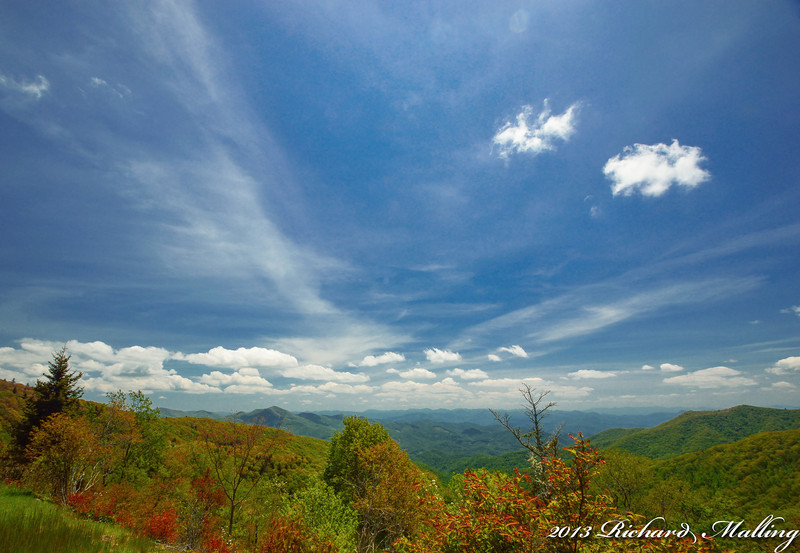 Unicoi Mountains Spring Colors