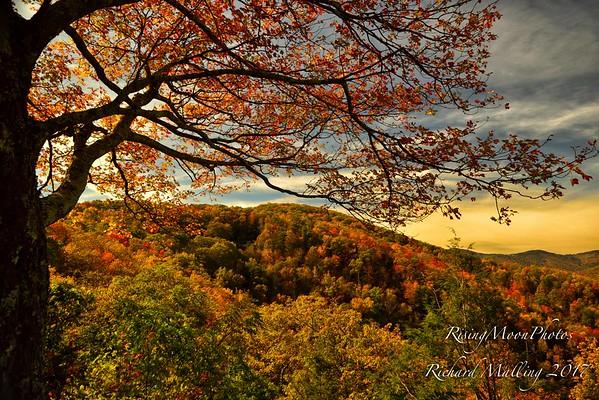 North Carolina Fall Colors 2017
