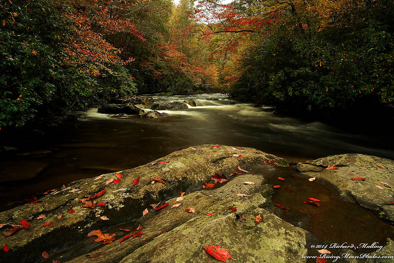 2014 NC Fall Colors