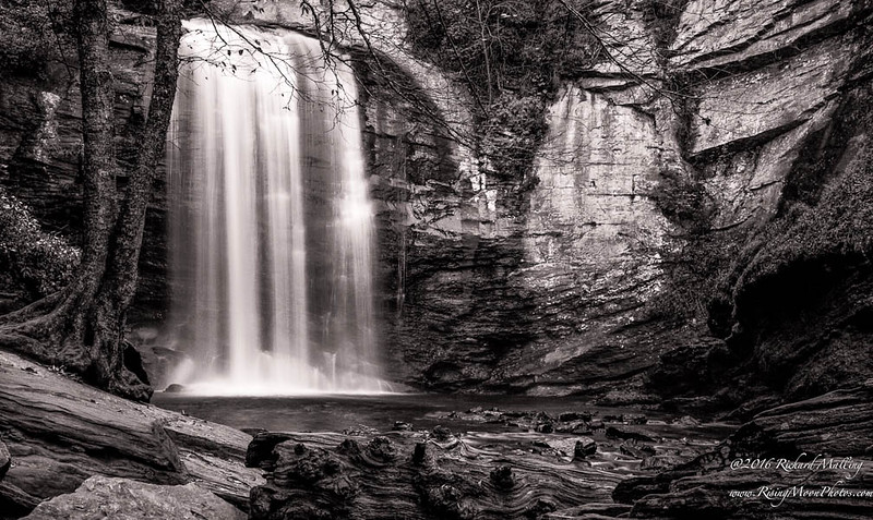 Looking Glass Falls 2015